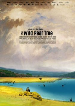 Herunterladen The Wild Pear Tree Film Torrent DFK